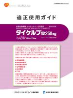 適正使用ガイド - Tykerb.jp