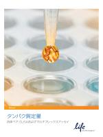 タンパク質定量カタログA版 - Life Technologies