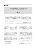 本文PDF [911K] - J