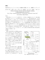 3B01 Au(111)上ジベンゾペンタセンの価電子状態とホール