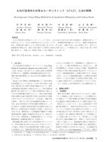 丸太打設液状化対策&カーボンストック(LP