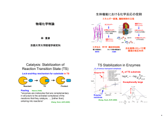 Catalysis: Stabilization of Reaction Transition State (TS)