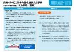 「商業・サービス競争力強化連携支援事業」(PDF