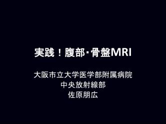 2013年度「MRIセミナー2」講義概要