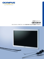 OEV261H