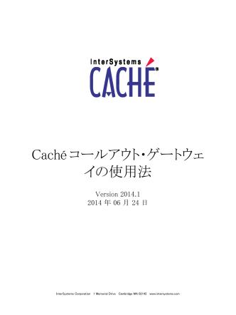 Caché コールアウト・ゲートウェイの使用法