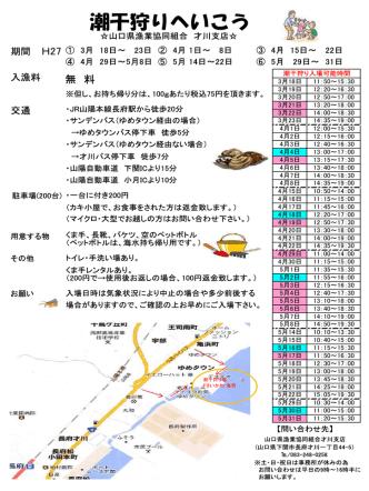 2015年才川潮干狩り情報