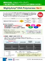 MightyAmp DNA Polymerase Ver.3