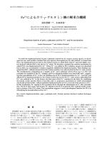 Fe2+によるポリ- γ-グルタミン酸の解重合機構 [pdf形式 1.4