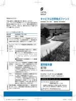 キャピタル世界株式ファンド 運用報告書 第7期