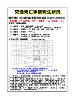 交通死亡事故発生状況[pdf]