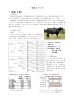 1 「福増」について(PDF:173KB)
