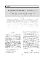 本文PDF [3446K] - J