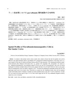 ラット島皮質における parvalbumin 陽性細胞の分布特性