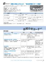 PDF 462KB