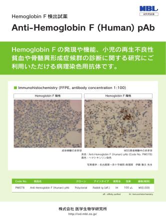 Anti-Hemoglobin F (Human) pAb