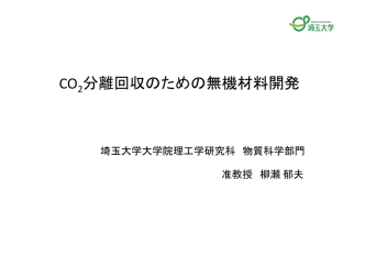 CO 分離回収のための無機材料開発