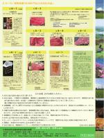 ふるさと納税パンフレット Cコースお礼の品(PDF:1426KB)