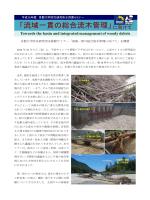 京都大学防災研究所水資源セミナー「流域一貫の総合流木管理に向けて