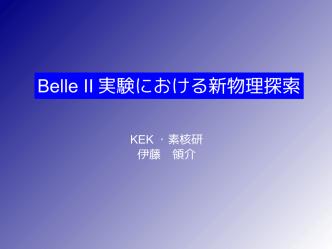 Belle II 実験における新物理探索