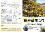 2015年 福寿草まつり[PDF:1MB]