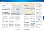 プラズマCVD酸化膜における 界面制御技術