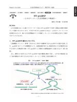 NT-proBNP - 一般社団法人 広島市医師会臨床検査センター