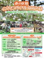 「春の妖精 イズモコバイモ祭り2015 」チラシ
