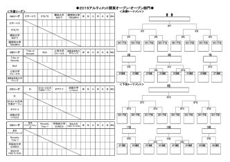 2015アルティメット関東オープン・オープン部門 9位