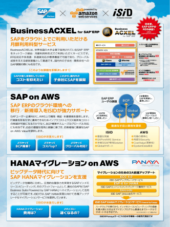 BusinessACXELfor SAP®ERP SAP on AWS