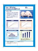 Iar: Wistar- Imamichi系ラット