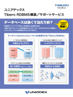 Tibero RDBMS構築