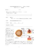 経尿道的膀胱腫瘍切除術(TUR-Bt)