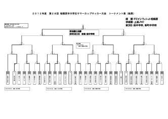 2012年度 第28回相模原市中学生サマーカップ大会結果(pdf)