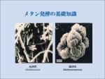 メタン発酵の基礎知識 - 再生可能エネルギー推進協会