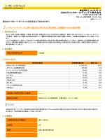 コーポレート・ガバナンス報告書(PDF)