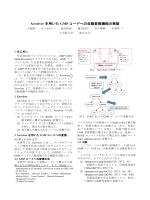 Xevolver を用いた GMP コードへの自動変換機能の実装