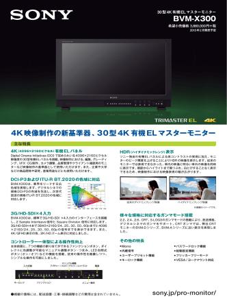 BVM-X300 1411 2466KB