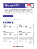 詳細はこちら - 関東化学株式会社
