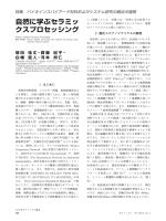 [PDF] (4.96MB)