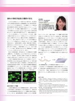 lD 線虫の神経突起除去機構の発見