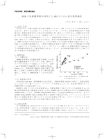 ESR と放射線照射を利用した OH ラジカル消去能評価法