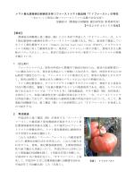 トマト黄化葉巻病の耐病性を持つファーストトマト新品種「TY