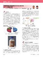 焼酎残渣の高温高圧ガス化におけるタール閉塞対策