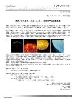 PDFファイル - 東洋インキSCホールディングス
