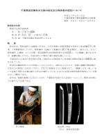 千葉県指定無形文化財の指定について(PDF:219KB)