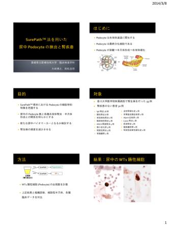 BD SurePath法を用いた尿細胞診の検討 -特にCR Redと
