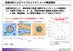 拡散NMRによるマイクロエマルションの構造解析
