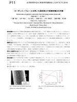 P11 ラマン散乱分光法による生体試料の分子構造解析