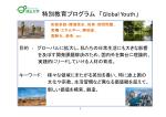 GYプログラム概要(PDF/961KB)